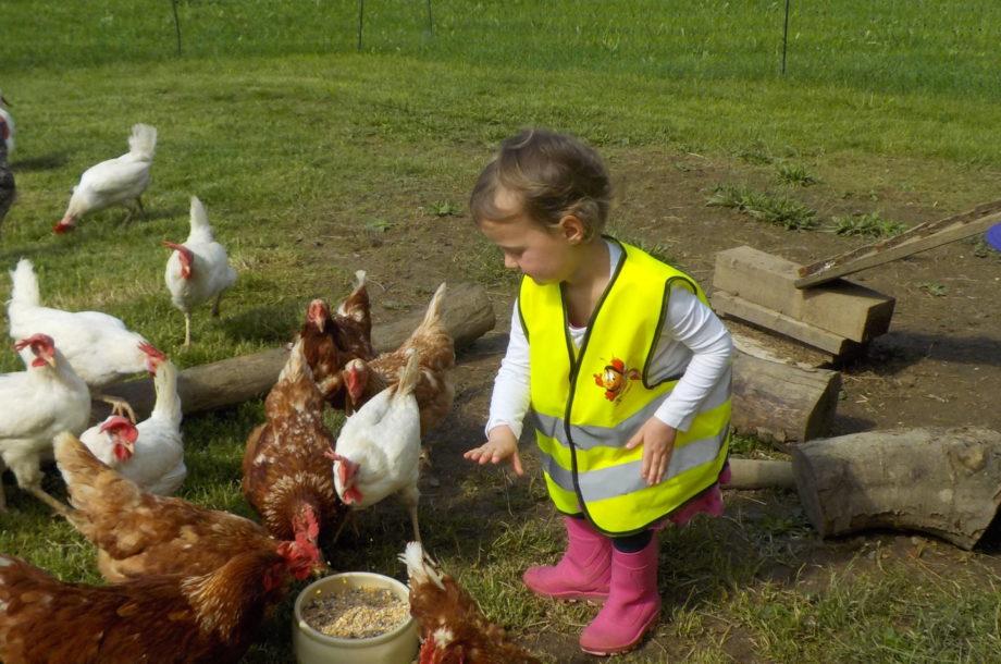 Besuch auf dem Bauernhof – Zwergengarten Langenegg