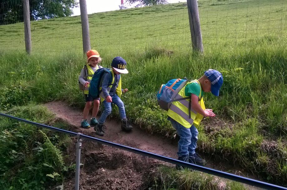 Der Zwergengarten Haselstauden auf dem Pfänder