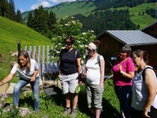 Kräuterwanderung im Bregenzerwald