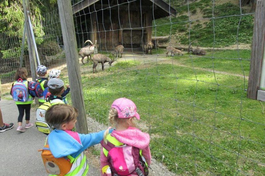 Ausflug auf den Pfänder mit den zukünftigen Kindergartenkindern