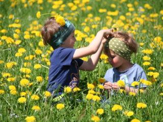 Schätze aus der Natur mit den Kindern neu entdecken