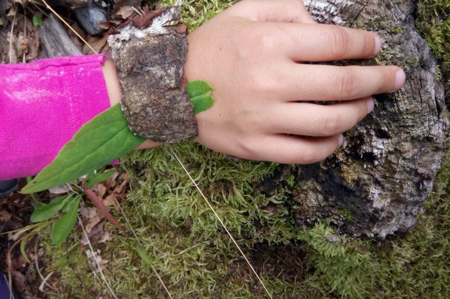 Volksschule Brand: Waldausflug