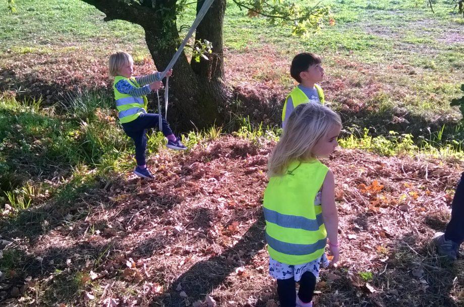Zwergengarten Haselstauden: Herbstschätze entdecken