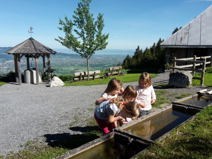 Tagesmütter: Ein Sommer bei der Tagesmutter