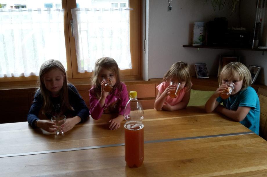 Tagesmütter Dornbirn: Sommer Ausflüge