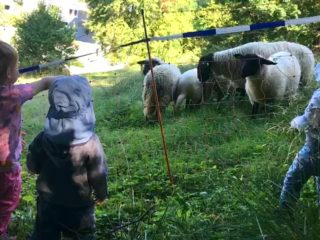 Tagesmütter Bregenz: Ausflug Pfänderhang