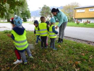 Zwergengarten: bunter Herbst