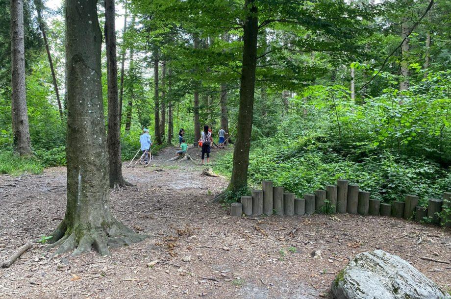Ferienbetreuung Höchst: Den Wald mit allen Sinnen entdecken
