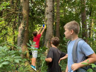 Ferienbetreuung Höchst: Spiele im Wald