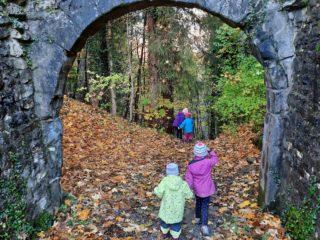 Farbenprächtiger Herbstspaziergang