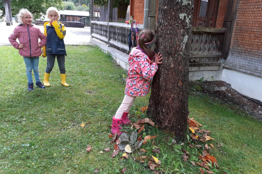 Schülerbetreuung Brand: Ein Baum erzählt